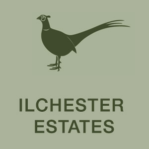 ilchester_estates