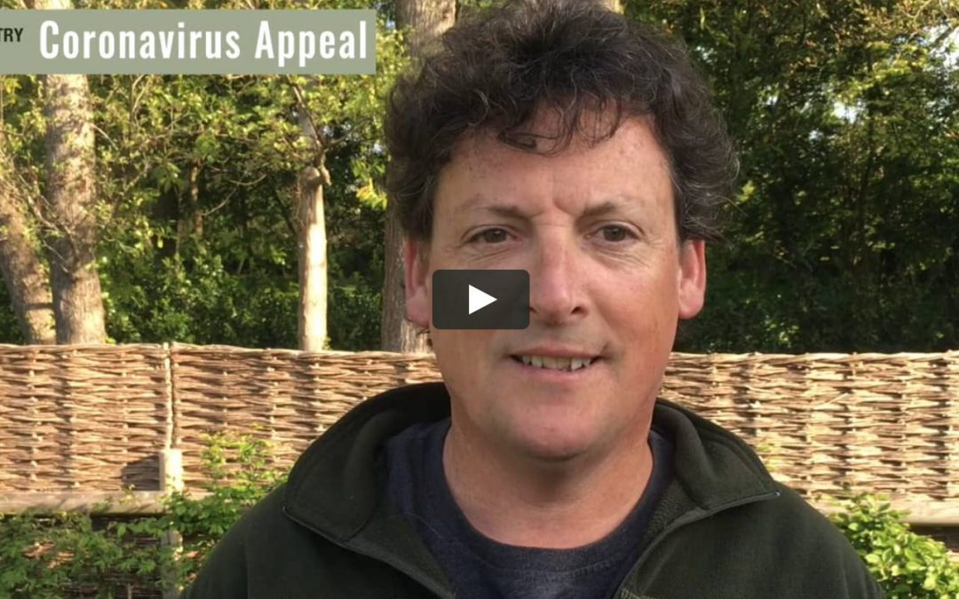 Coronavirus Appeal Update